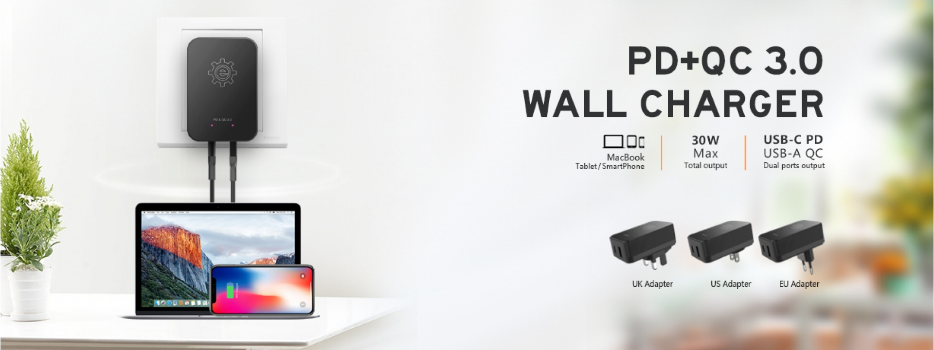 PD + QC3.0 Wall Charger